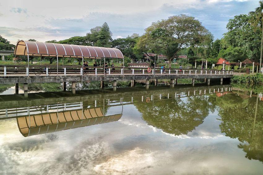 Lower Seletar Reservoir Nature Nparks Nparksbuzz Reflection Reservoir Tranquility Tree