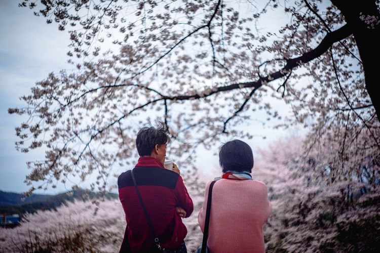 Rear view of couple walking on street amidst trees