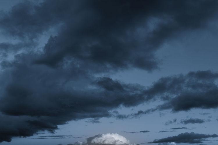 storm wins blue