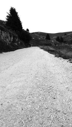 Blackandwhite Blackandwhite Photography Black And White Black And White Photography Blackandwhitephotography Black And White Collection  Black & White Black&white Mountainroads Whiteroads Stradebianche Trees Mountainscape