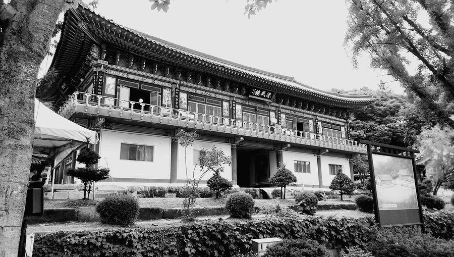 Shades Of Grey temple in Korea Temple Korea Buddha