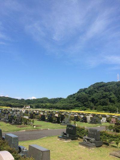 Cemetery Japan Park Parkcemeery Yokosuka