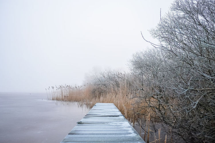 Boardwalk By Bare Trees Over Lake During Winter