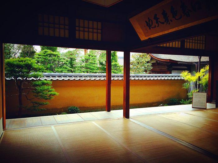 大徳寺 龍源院 京都 Kyoto Relaxing 寺社仏閣 書院