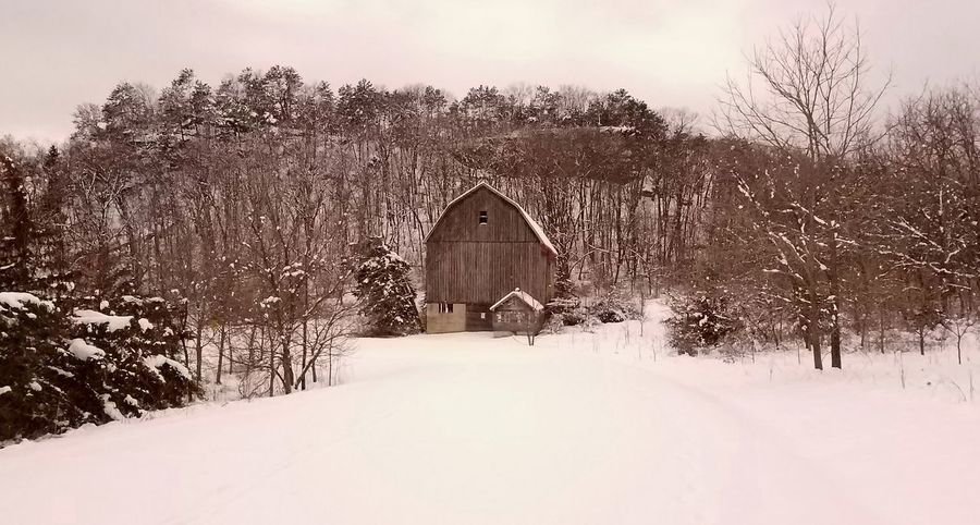 Barn Barns Barn In Winter Snow Snowy Barn Snowy Scene Snowy Scenes Winter Historic Historic Buildings  Winter Scene Quiet Cold Quiet Places Grey Color Wisconsin Winter Wisconsin Snowy Landscape Wintertime