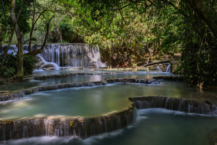 Kuang Si Falls, near to Luang Prabang Travel Travel Photography Tree Water Waterfall Landscape Stream Tranquil Scene Tranquility Non-urban Scene