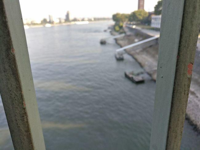 Hohenzollernbridge Hohenzollernbrücke Köln Cologne Photokina Focus On Foreground Rhein Rhine