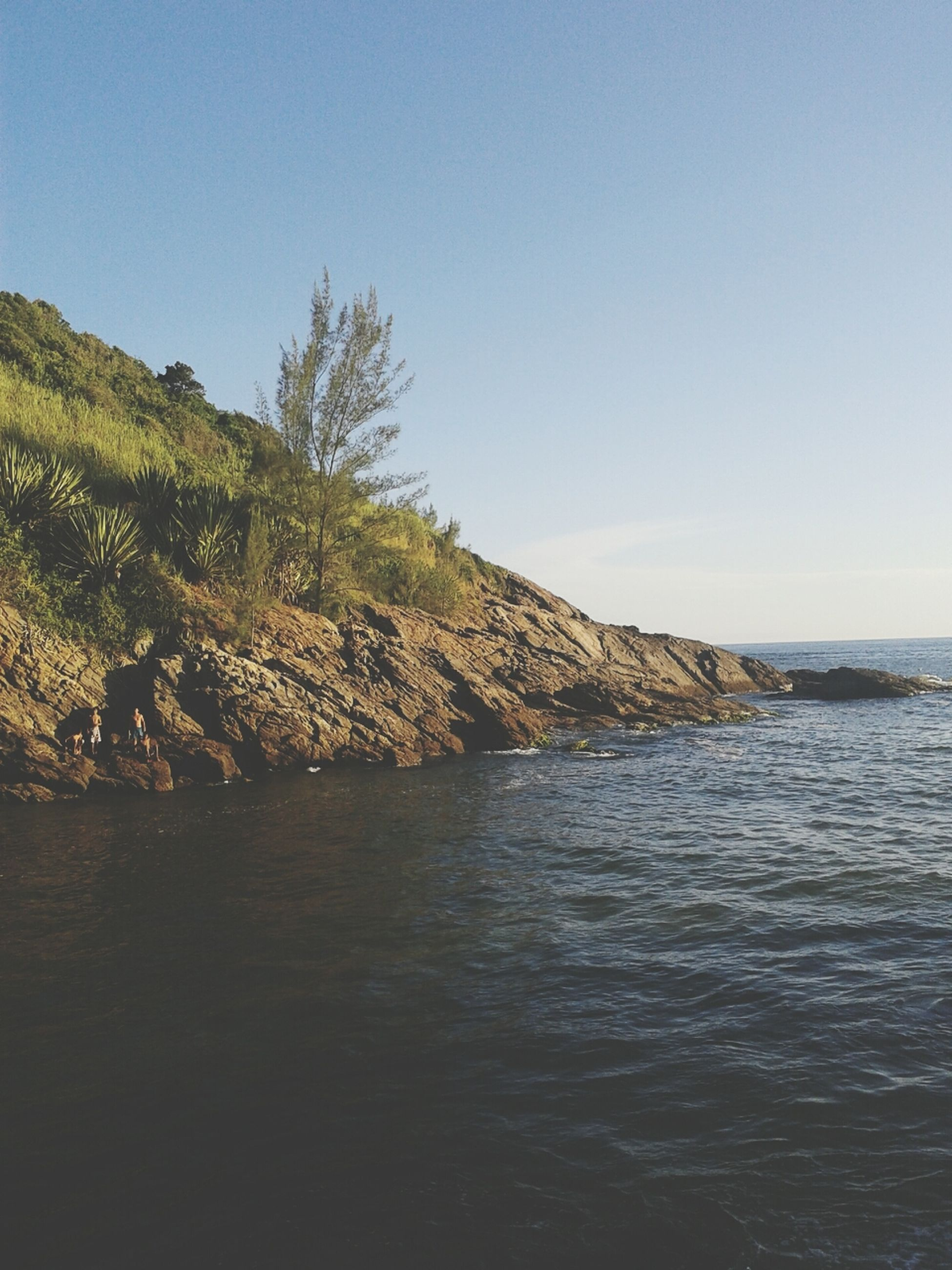 water, clear sky, sea, tranquil scene, tranquility, copy space, scenics, beauty in nature, horizon over water, nature, blue, beach, idyllic, sky, waterfront, shore, rippled, tree, day, calm