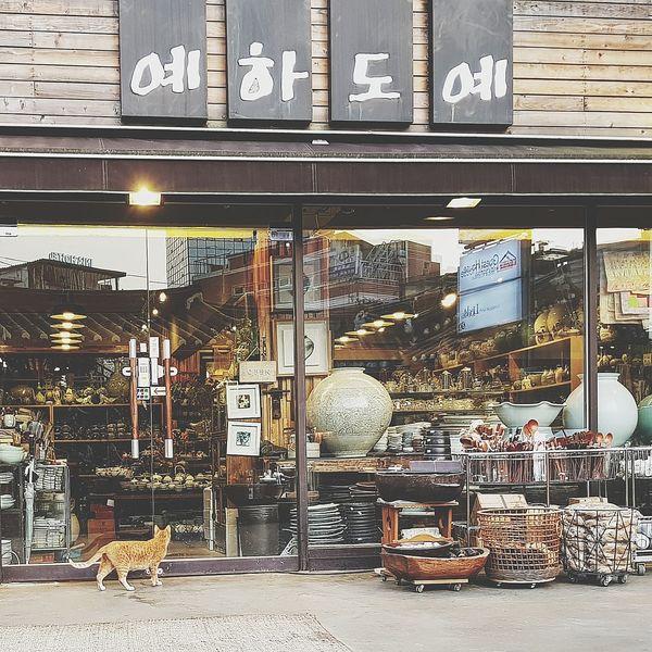Cat Cetamics Shop Insadong Seoul Tripwithsonmay2017 Tripwithson2017 South Korea