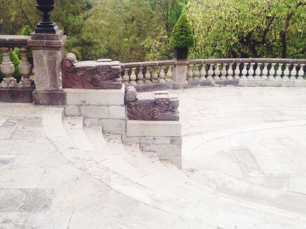 Serpientes guardianas del castillo. Chapultepec Cdmx 😀