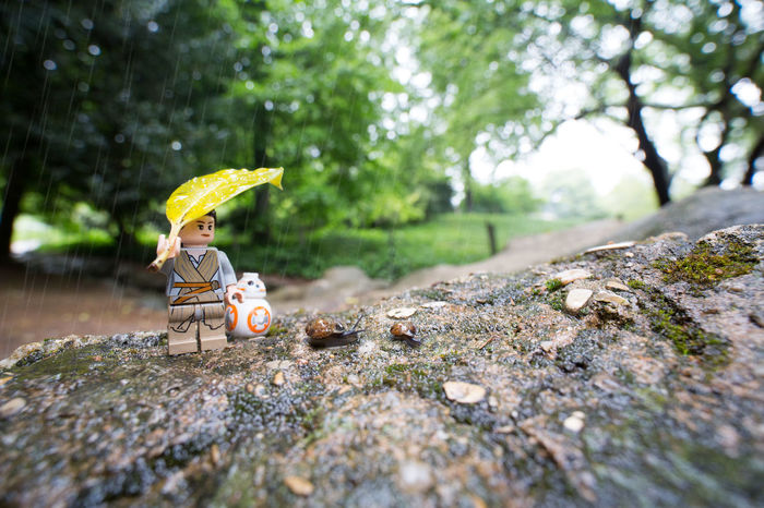 May the 4th with be you MayThe4thBeWithYou MayTheFourthBeWithYou MayTheForceBeWithyou SceneculteSW Ray Bb8 Starwars Legostarwars Escargots Escargots🐌 Rain Outdoors Toysphotography