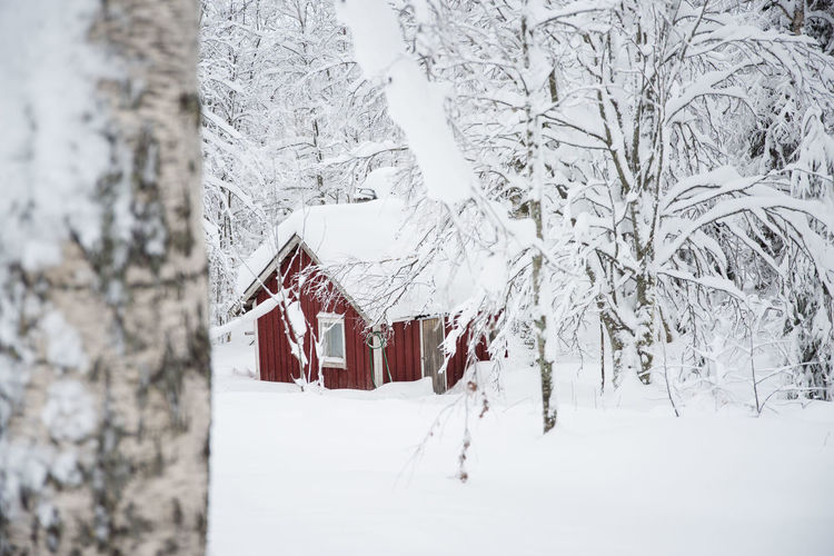 Architecture Beauty In Nature Building Exterior Built Structure Cold Temperature Day House Landscape Nature No People Outdoors Scenics Snow Tree White Color Winter