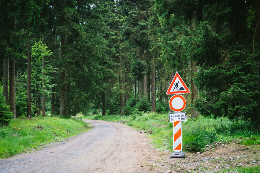 Communication Day Direction Dirt Road Forest Forest Photography Green Color Growth Guidance Harz Harzmountains Land Nature No People Non-urban Scene Outdoors Plant Road Road Sign Sign The Way Forward Transportation Tree Warning Sign