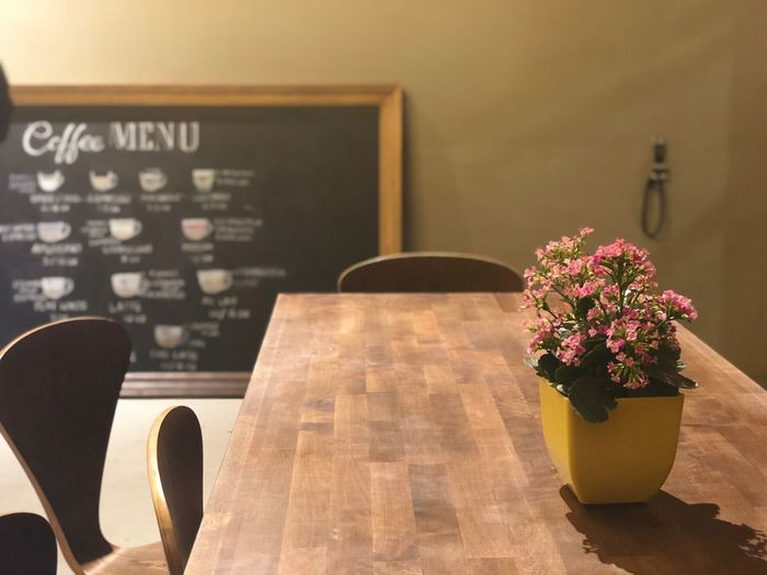 When there's no one around you Cafe Flower Indoors  No People Table Close-up Architecture Freshness Day