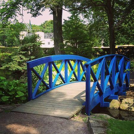Blue bridge in the citypark Kalmar Summervacation Kalmarsommar