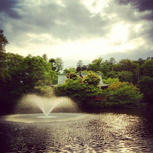 Inokashira Park Tokyo Park Japan Inokashira