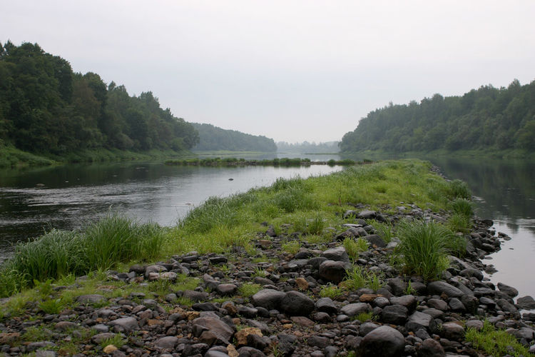 Nature River View Riverside Day Landscape No People River River West Dvina Riverbank