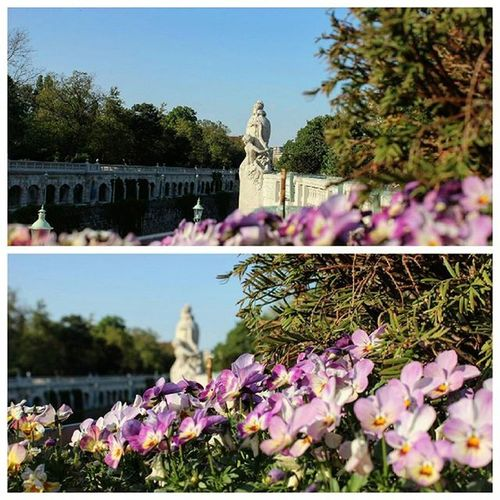 May you live every day of your life. . Vscocam Vscoturkiye Türkiye Vienna Viyana Austria Avusturya Wien Stadtpark Stadtparkwien Happyday Travel Traveling Österreich Have A Nice Day
