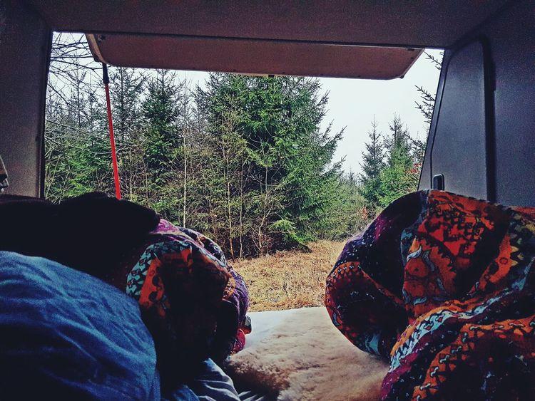 Morning view in Nävlinge, sweden. Our little big adventure VW Bus, T3 Joker. Day Tree Sky BusJourney VWbus VwT3 Wildcamping Schweden Sweden Morning View Wälder Forest Photography Vanlife Buslife Cozy Place First Eyeem Photo Miles Away