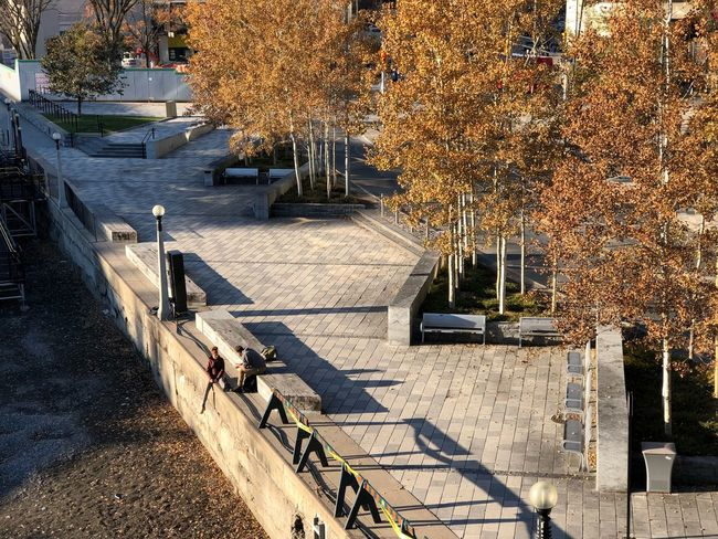 People Sitting Outdoors People Talking Ottawa Rideau Canal Canal Couples Two People Autumn Tree Change Outdoors Nature Day Sunlight High Angle View Steps Leaf Beauty In Nature Architecture Shadow
