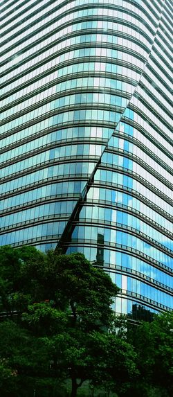 Architecture Glass - Material Architectural Detail Building Exterior Building Detail Blue Skyscrapers Rithym Composition Mobile Photography Daily Life São Paulo Brazil Close-up No People Architecture Details Outdoors Love Architecture Top Of Trees