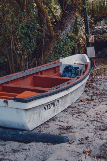 Martinique Martinique Beach Boat Day Fish Fishing Boat Islandlife Mode Of Transportation Nature Nautical Vessel No People Outdoors Transportation Travel Tropical