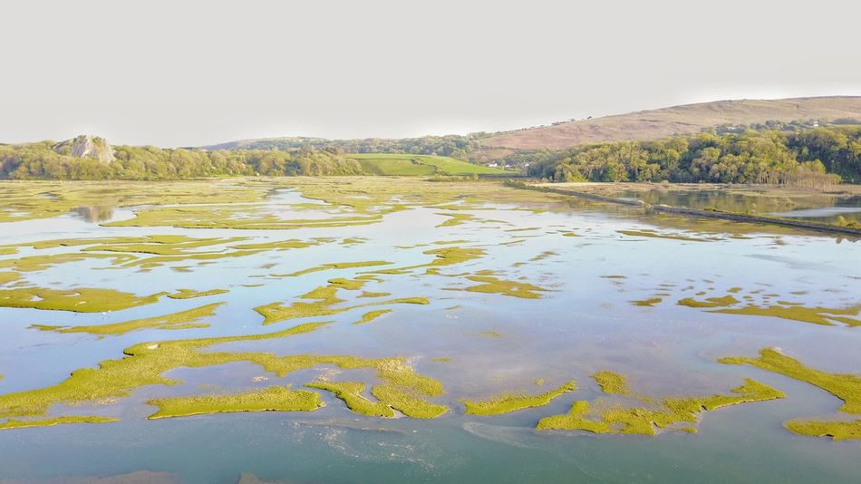 High tide... Water No People Outdoors Landscape Nature Algae Scenics Marsh Mountain Day Beauty In Nature Sky My Point Of View Wales Tranquility Naturelovers My Point Of View! Hello World Calm View SummerNights Green Color Wetlands
