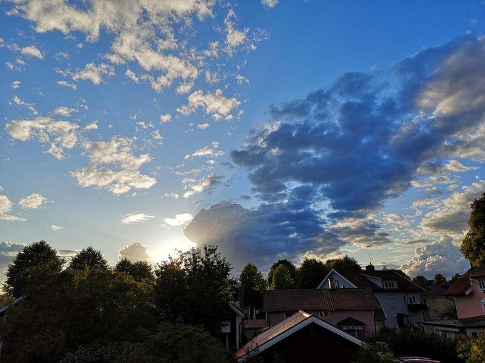 Sky near sunset seen from window Tree City Roof Sky Cloud - Sky Sky Only Sunset Dramatic Sky Scenics