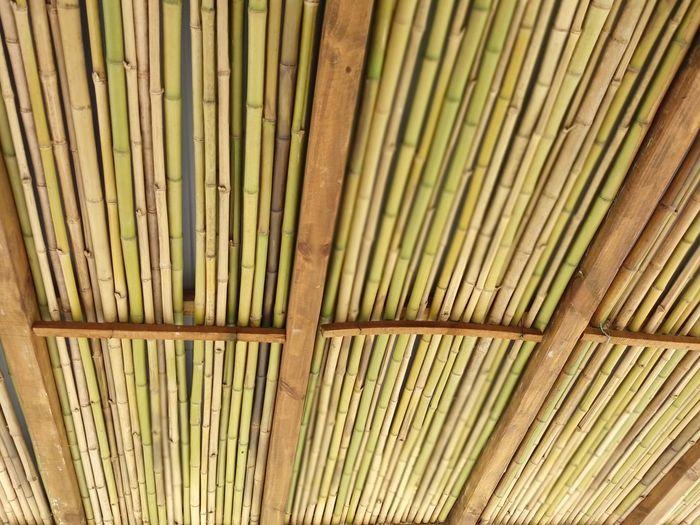 Full frame shot of bamboo