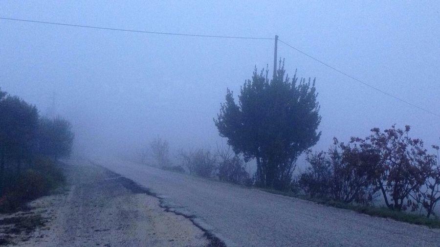 NEBBIA, nebbia ovunque Mazzangrugno Nsevedeuncazzo Venerdímattina Misgarrolevene