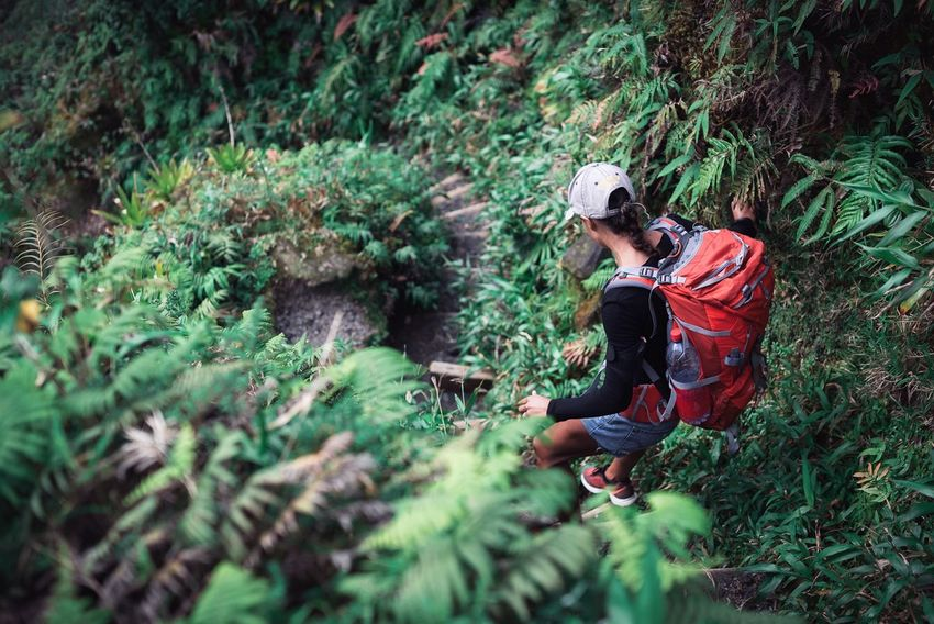 Adventure Hiking Nature Forest Adult Adults Only Women People Tree Beauty In Nature Men Outdoors Eco Tourism Only Women Day One Person Ecology Martinique Caribbean Sport Woman Girl Fit