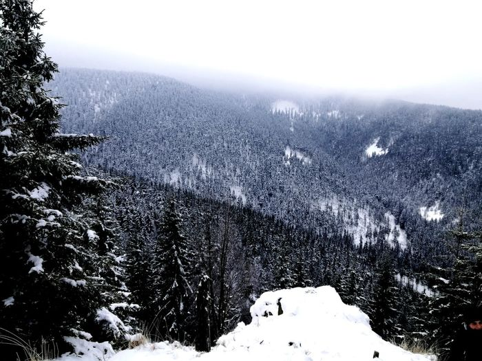 on our way Winter Snow Cold Temperature Nature Weather No People Outdoors Mountain Landscape