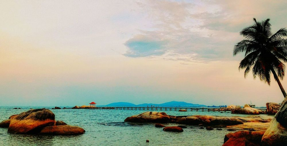 sunset in the beach First Eyeem Photo Water Sea Nature Sky Beauty In Nature Beach Cloud - Sky Day Tree Horizon Over Water