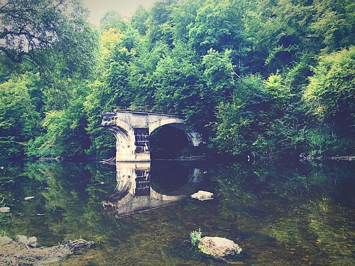 My last picture from the Ardennes. I had a fun experience in wich I learned a lot about taking pictures. In this picture you see an old trainbridge. Ardennes La Semois River Bridge