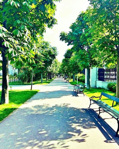 Relaxing Park