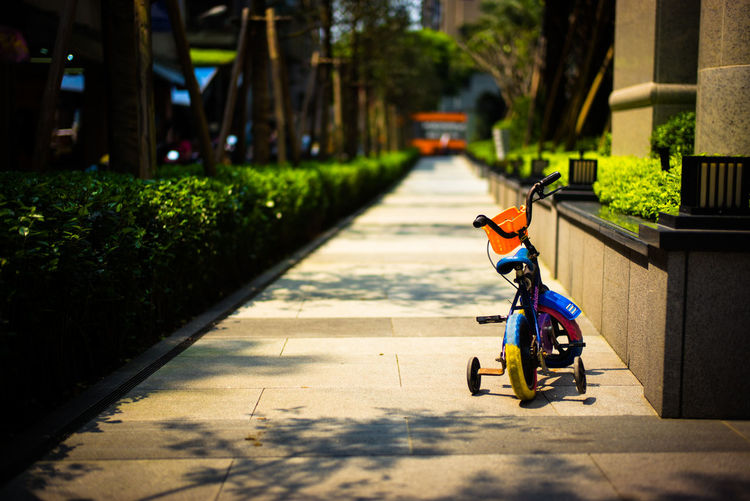 Child bicycle on garden path