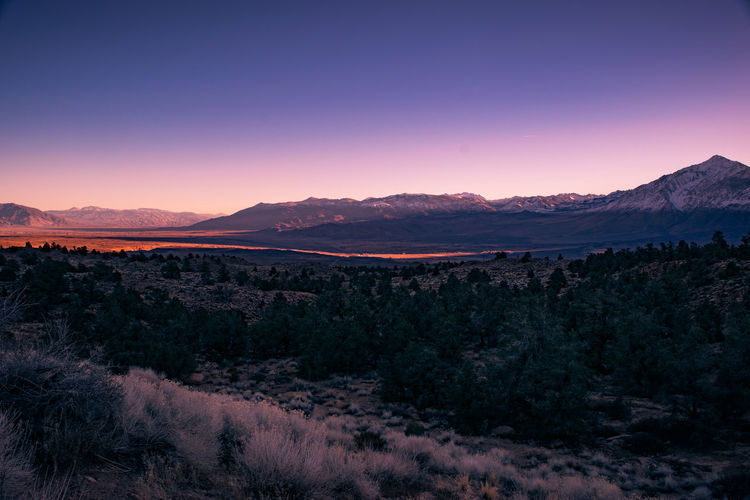 Mountain Landscape Nature Scenics Mountain Range Beauty In Nature Sierra Nevadas Sierra Nevada Mountains Sierra Nevada Roadsidephotography Roadside America Landscape Photography Landscape_photography Landscape_Collection Nature Backgrounds California From My Point Of View