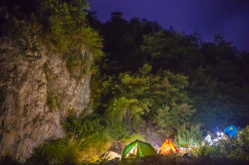 High angle view of illuminated tent in forest at night