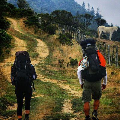Dos montañista recorren los caminos del páramo de Batallon y la Negra perteneciente al parque nacional Juan Pablo Peñaloza ubicado entre los municipios Jauregui y Uribante del estado Tachira  en Venezuela Venezuelatravel Venezuelaes Gotravelfree Gf_venezuela Gf_colombia IG_GRANCARACAS IgersVenezuela Insta_ve Instapro_ve IG_Venezuela InstaLoveVenezuela Instafoto_ve Instaland_ve Destinomaschevere Tequierovenezuela Thisisvenezuela Icu_venezuela Ig_lara Igworldclub Ig_tachira IG_Panama Ig_merida Instavenezuela elnacionalweb venezuelapaisajes instanature gf_daily venezuelacaptures