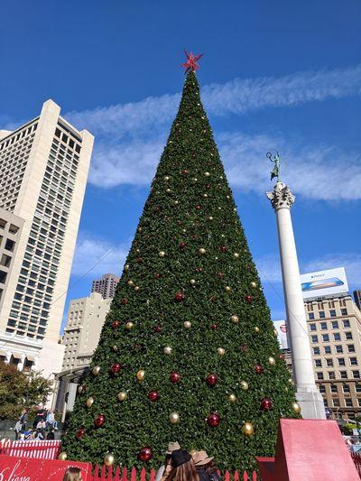 Christmas Christmas Tree Christmas Lights Holiday - Event Tree Topper Christmas Ornament Union Square SF Union Square/San Francisco
