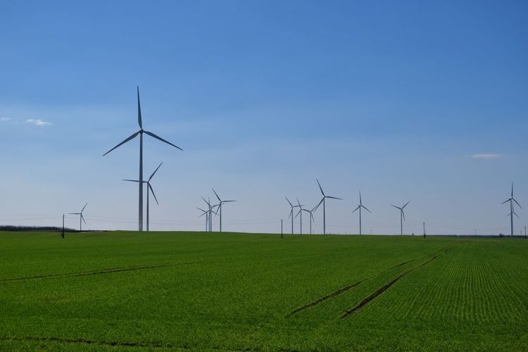 Rural Scene Agriculture Alternative Energy Wind Power Wind Turbine Growth Renewable Energy Environmental Conservation Nature Field No People Sky Landscape Windmill Clear Sky Outdoors Day Green Color Clear Sky Growth Field Beauty In Nature Windmill Nature Technology
