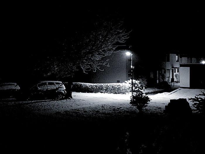 Black & White Lonely