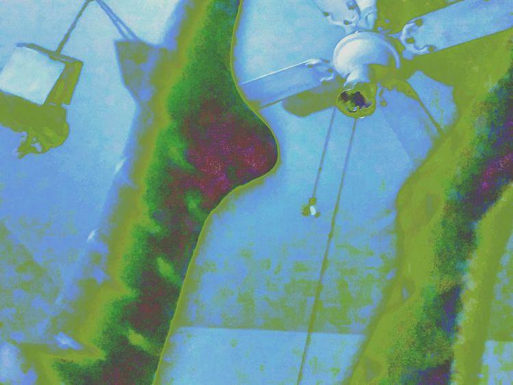 Legs In The Air Legs Up LegsintheAir Legsinbed Feet Up Feetup Feet In The Air Lying On The Bed Lying On Back Lying Down Laying In My Bed Laying Down Looking Up Her Feet Bird House Ceilingporn Socksporn Ceilingfan Ceiling Fan Birdhouse Lookingup Layingdown Laying In Bed Inbedphotography In Bed
