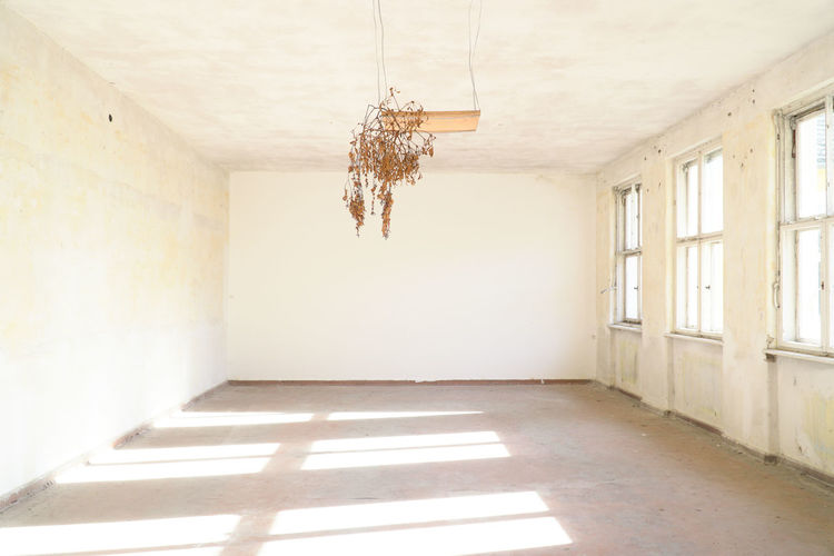 Architecture Hanging Bright Light And Shadow Room Shadow Ceiling Sunlight Window Forgotten Empty Hope Sunbeam Indoors  Abandoned Places Psychology Absence Dreamlike Dead Plant Wall - Building Feature Olympic Village Domestic Room Hope - Concept Abandoned