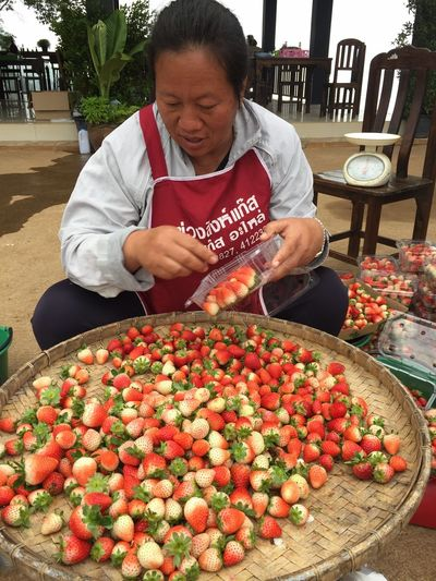 Strawberry ThaiFoodGoodTaste Fruit Chiang Mai | Thailand Photography Photooftheday Thailand Fruit Working Business Finance And Industry Market Retail