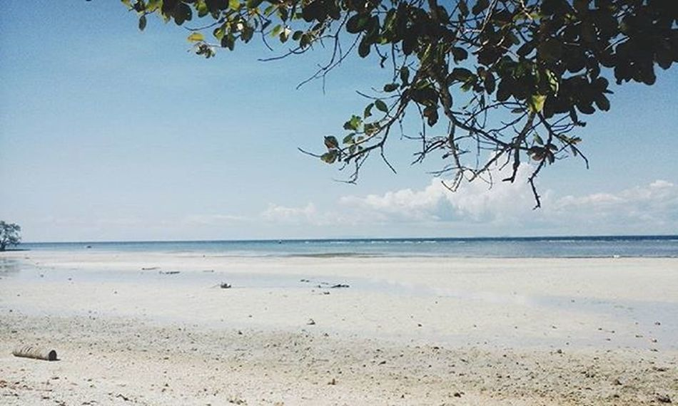 Sea Ombre 🌊🌊🌊 . . . . . . Vscocam VSCOPH VSCO Summer Nature Siquijorisland Siquijor Travelingram Travel The Great Outdoors With Adobe Philippines Beach Vacation