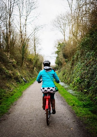 cycle path cruising Cycling Hobbies Cycling Helmet Headwear Tree Sports Race Mountain Bike Biker Motocross Go Higher