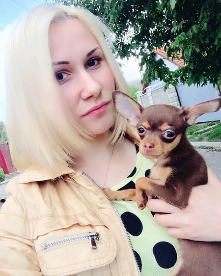 Russiantoy Toyterrier Luxurydog Fashionblogger Blonde