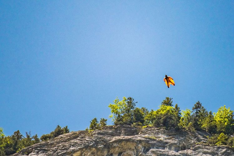 Basejump BaseJumping Tree Nature Mid-air Plant Flying Sky Blue Beauty In Nature Day Scenics - Nature Low Angle View Extreme Sports Travel Destinations Rock Mountain Outdoors Sport Clear Sky Adventure Freedom