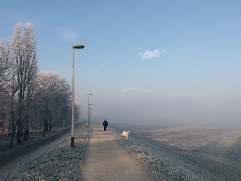 Doggy enjoying winter day outdoors with his owner, Zagreb, Croatia, 2016. Zagreb Croatia Dog Enjoying Nature Outdoors Enjoying Leisure Activity Lifestyles The Way Forward Domestic Animals Pet Walking Bank River Bank  Lamp Winterland Winterscapes Adapted To The City